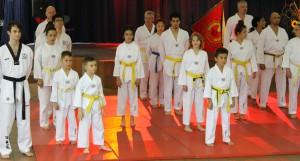 TV 14 Taekwondo