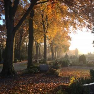 Herbst 2 IMG_0608
