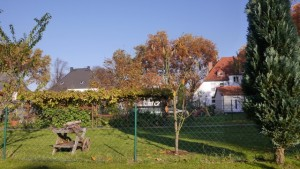 hansemann 5 P1030718
