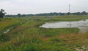 Ein Teil des Hochwasserrückhaltebeckens.