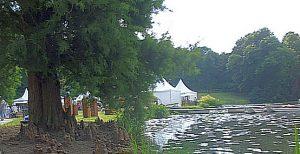 """Sumpfzypresse mit """"Atemknien"""" am Teichrand - eins der Naturdenkmale im Park."""